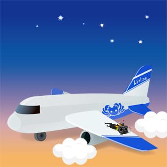 airline1.jpg